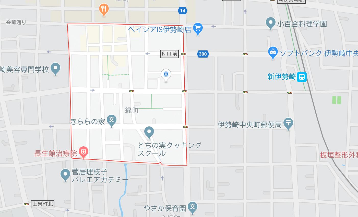 伊勢崎 本サロ